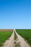 Country road to the fields Royalty Free Stock Images
