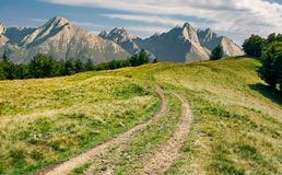 Country road in to the forest along the meadow. Composite landscape with Hight Tatra mountains. country road in to the distant forest along the grassy meadow stock images
