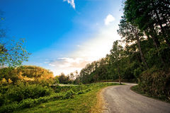 Country road. To Huai Nam Dang National Park with sunlight blue sky, Thailand Stock Photo