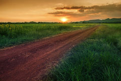 Country road to mountain and sunset sky in agriculture field lop Stock Image