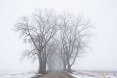 Country road to nowhere. Mysterious foggy road. stock image