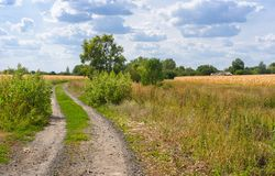 Country road to remote settlement in Ukraine Royalty Free Stock Images
