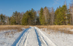 Country road to winter forest Royalty Free Stock Photos