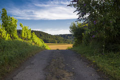 Country road with trees and bushes on both sides, and ahead the Stock Images