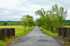 Country road with trees and fence Stock Photo