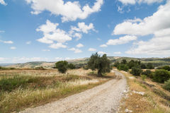 Country road in Troodos region of Cyprus Royalty Free Stock Image