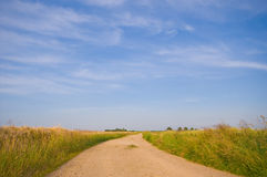 Country road trough farmlandscape. With a blue sky Royalty Free Stock Image