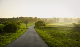 Country road true green fields. royalty free stock images