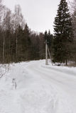 Country road turn in snowy winter forest Royalty Free Stock Photography