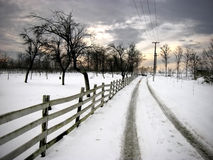 Country road in the twilight Royalty Free Stock Photos