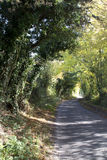 Country Road. Typical country road in the UK.  Usually a B road lined with trees or hedge rows.  Very beautiful.  Roads could be narrow lane Stock Photos