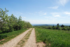 Country road in Ukraine. Country dirt road in Carpathian mountains, Ukraine stock image