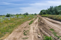 Country road in Ukraine Royalty Free Stock Images