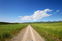 Country road under the sky Royalty Free Stock Images