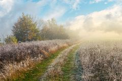 Country road uphill through meadow. With frozen grass. distant trees in fog. amazing sunny morning weather stock images
