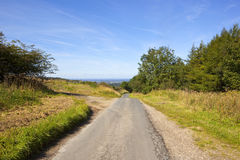 Country road and vale of york. A small country road overlooking the vale of york beside woodland under a blue summer sky in the yorkshire wolds Royalty Free Stock Photography