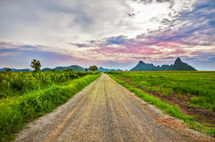 Country road in the valley Royalty Free Stock Images