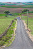 Country Road Vertical Stock Images