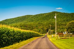 Country road and view of the Blue Ridge Mountains in the Shenand Stock Images