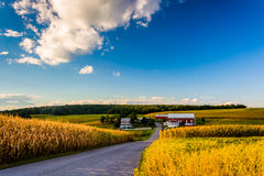 Country road and view of a farm in rural York County, Pennsylvania. stock photo