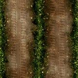 Tire tracks Stock Image