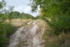 Country road. Beside a village in Ukraine Royalty Free Stock Photo