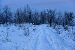 Country road in winter. Country road beside a village in Ukraine in winter time Stock Photography