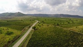 Country road through the vineyards somewhere in Dobrogea, Romania stock video footage