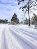 Country Road Winding In Deep Snow through the Forest on a Chilly Winter Day. Altai Mountains, Kazakhstan.  royalty free stock photo