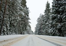 Country road in winter Royalty Free Stock Photos