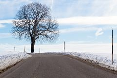 Country road in winter Royalty Free Stock Images