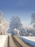 Country road in winter landscape Stock Images