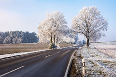 Country road in a winter landscape with frosted trees Stock Images