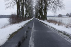 Country road in winter. Royalty Free Stock Photography