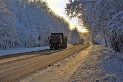 Country road in the winter Royalty Free Stock Image