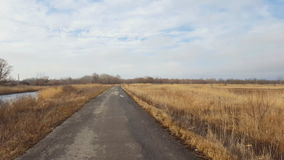 Country road in winter time. Steadicam shot stock video footage