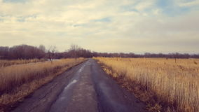 Country road in winter time. Steadicam shot stock video