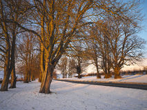 Country Road in Winter - Yorkshire - England Stock Images
