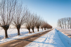 Country road in a wintry Netherlands Stock Photography