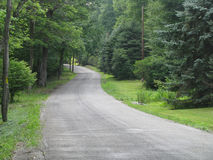 Country Road Through the Woods Royalty Free Stock Photo