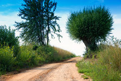 Country road wriggling up Royalty Free Stock Photo