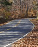 Country Roads. Twisting curving country road, lots of fall leaves,sun shining thru trees casting long shadows Royalty Free Stock Photography