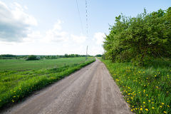 Country roads in perspective from above Stock Photography