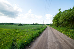 Country roads in perspective from above Royalty Free Stock Image