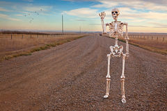 Country Roads Skeleton. A friendly skeleton walking along a lone country road stock photo