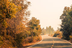 Country roads. Take me to nature Stock Image