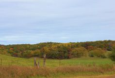Country Roads. Trees and fields in Wisconsin Stock Photos