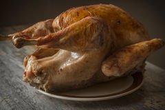 Country Roasted Turkey Royalty Free Stock Photography