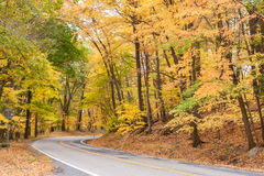 Country Road in Autumn Stock Photography