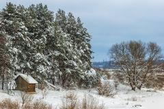 Country sauna in the snow, on the river Mologa in the winter. Bath in the snow, among the trees Royalty Free Stock Photo